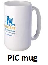 PIC mug